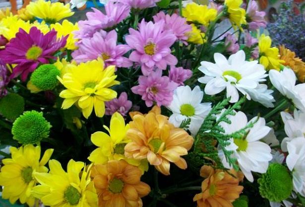 El feng shui y las flores florister a for Flores para el hogar feng shui